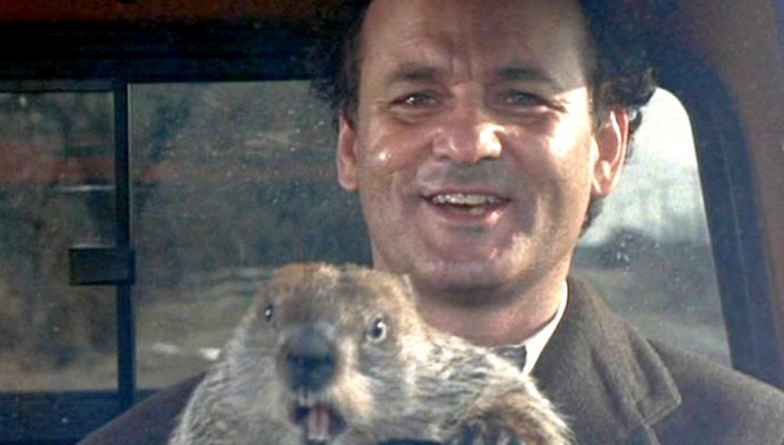 Bill Murray and Punxsutawney Phil in the movie Groundhog Day